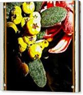 Yellow Berries Acrylic Print