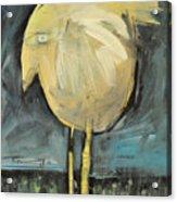 Yellow Bird In Field Acrylic Print