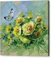 Yellow Blossoms And Butterfly Acrylic Print