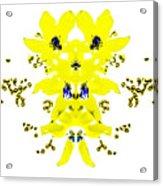 Yellow Blue Blossoms Acrylic Print