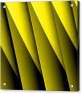 Yellow Borders Acrylic Print