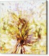 Yellow Burning Yucca Acrylic Print