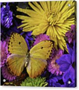 Yellow Butterfly On Bouquet Acrylic Print