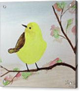 Yellow Chickadee On A Branch Acrylic Print