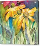Yellow Coneflower Acrylic Print