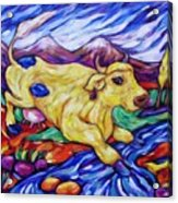 Yellow Cow Jumps The Creek Acrylic Print