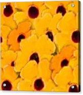 Yellow Daisy Flowers Acrylic Print