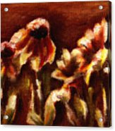 Yellow Daisys Acrylic Print