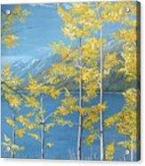 Yellow Dreams Acrylic Print