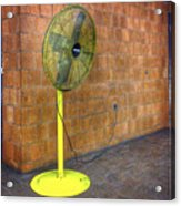 Yellow Fan Acrylic Print