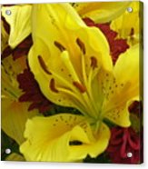 Yellow Floral Acrylic Print