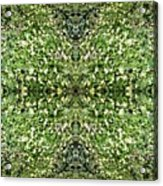 Yellow Flower Mandala 2 Acrylic Print