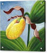Yellow Lady Acrylic Print