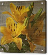 Yellow Lilies With Old Canvas Texture Background Acrylic Print