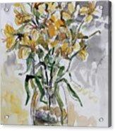 Yellow Lillies Acrylic Print
