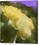 Yellow Pitch Acrylic Print