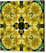 Yellow Primrose Kaleidoscope Acrylic Print