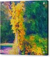 Yellow Reflections Acrylic Print