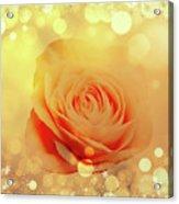 Yellow Rose And Joy Acrylic Print