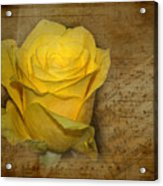 Yellow Rose With Old Notes Paper On The Background Acrylic Print