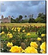 Yellow Roses And Dark Sky Acrylic Print