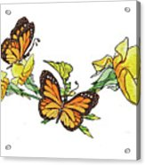 Yellow Roses And Monarch Butterflies Acrylic Print