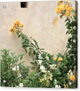 Yellow Roses And Tiny Window At Carmel Mission Acrylic Print