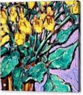 Yellow Roses Acrylic Print by Sheila Tajima