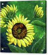 Yellow Sunflowers On Green Acrylic Print