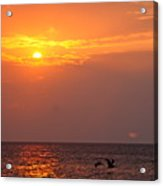Yellow Sunrise And Three Birds Acrylic Print