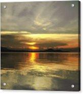 Yellow Sunshine Acrylic Print