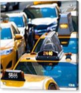 Yellow Taxis Acrylic Print