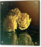 Yellow Vintage Roses  Acrylic Print