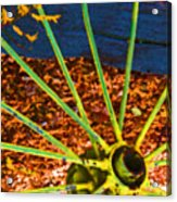 Yellow Wheel Acrylic Print