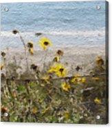 Yellow Wildflowers- Art By Linda Woods Acrylic Print
