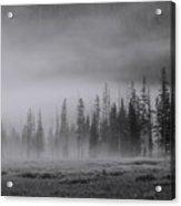 Yellowstone 148 Acrylic Print