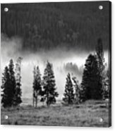 Yellowstone 157 Acrylic Print