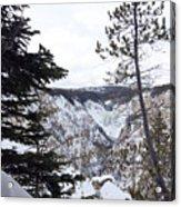 Yellowstone Canyon Acrylic Print