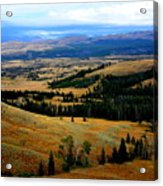 Yellowstone Acrylic Print by Carrie Putz