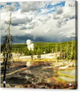 Yellowstone Colors #3 Acrylic Print
