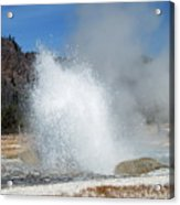 Yellowstone Features  Acrylic Print