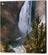 Yellowstone Grand Canyon Falls Acrylic Print