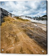 Yellowstone Hot Springs Acrylic Print