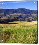 Yellowstone Landscape 3 Acrylic Print