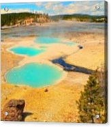 Yellowstone Acrylic Print