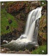 Yellowstone Moose Falls Acrylic Print