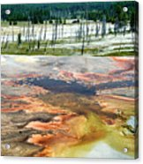 Yellowstone Park Firehole Spring Area Vertical 02 Acrylic Print