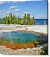 Yellowstone Prismatic Pool Acrylic Print by Brent Parks