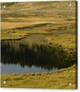 Yellowstone River Pond Acrylic Print