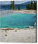 Yellowstone Water Pool Acrylic Print by Brent Parks